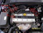 motor-x18xe-stecker-nws-kws-lmm-31987.JPG